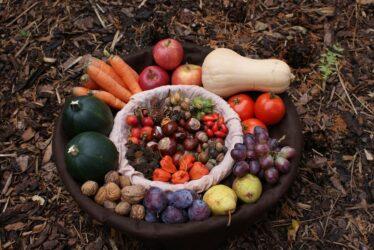 φρούτα και λαχανικά φθινόπωρο