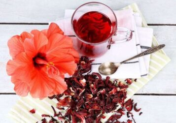 τσάι Ιβίσκου υπέρταση