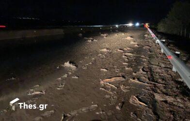 Κακοκαιρία Μπάλλος: Εκλεισε η Εγνατία Οδός έξω από την Θεσσαλονίκη – Γέμισε με φερτά υλικά (ΒΙΝΤΕΟ & ΦΩΤΟ)